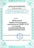 сертификат шеболкина-001